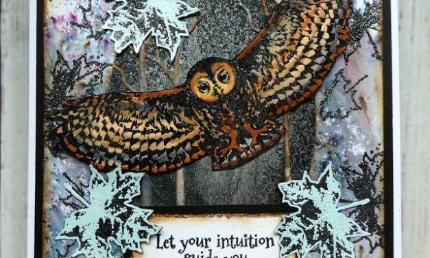 Card Using Visible Image Stamps By Jane Tyrrell
